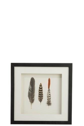 Obraz dekoracyjny Feathers 3 black